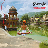 Ineffable Mysteries From Shpongleland by Shpongle