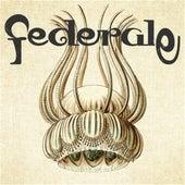 Federale by Federale