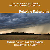 Relaxing Rainstorm: Nature Sounds for Meditation, Relaxation and Sleep by David and Steve Gordon