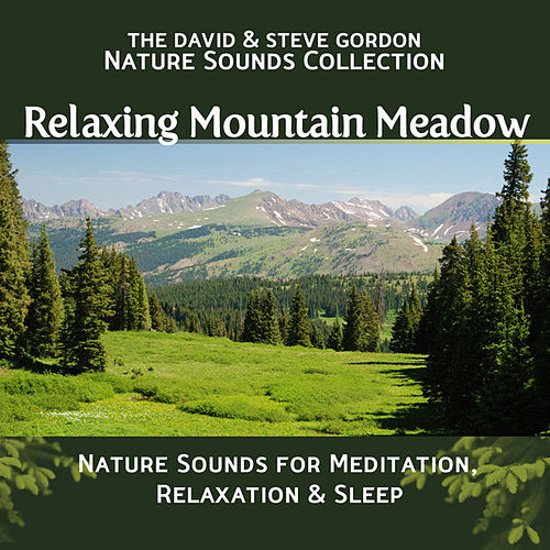 Relaxing Mountain Meadow: Nature Sounds for Meditation, Relaxation and Sleep by David and Steve Gordon