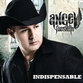Indispensable by Angel Fresnillo