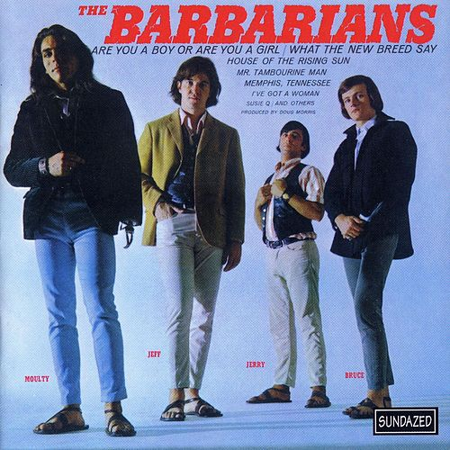 Are You A Boy Or Are You A Girl? by The Barbarians
