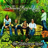 Different Kind Of Light by The Statesboro Revue