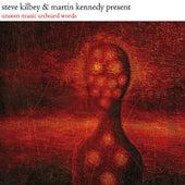 Unseen Music Unheard Words by Steve Kilbey