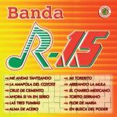 Arreando La Mula by Banda R-15