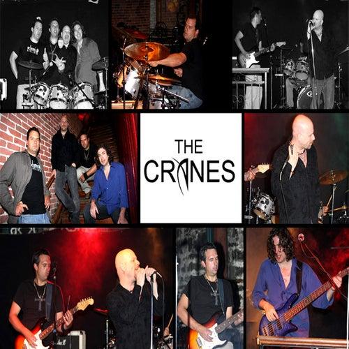 The Cranes by Cranes