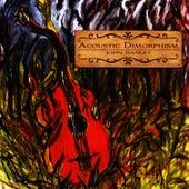 Acoustic Dimorphism by John Danley