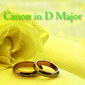 Canon In D Major by The O'Neill Brothers