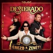 Érezd a zenét! by Desperado