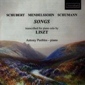 Schubert, Mendelssohn & Schumann: Songs (arr. Franz Liszt) by Antony Peebles