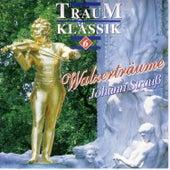 Traum Klassik 6 by Großes Salon Orchester Wien
