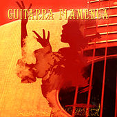 Éxitos de la Guitarra Flamenca (Hits of Flamenco Guitar) by Various Artists