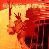 Éxitos de la Guitarra Flamenca (Hits of Flamenco Guitar) by Various Artists