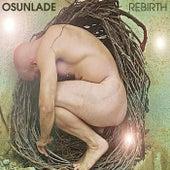 Rebirth by Osunlade