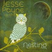 Nesting by Jesse Payne