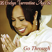 Go Through by Evelyn Turrentine-Agee
