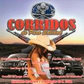 Corridos De Pura Calidad by Alacranes Del Bravo Y Centenarios De N. Leon