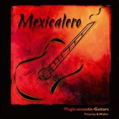 Mexicalero by Magic acoustic Guitars