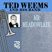 Mr. Meadowlark by Ted Weems