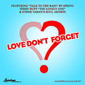 Love Don't Forget von Various Artists
