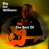 The Best Of by Big Joe Williams