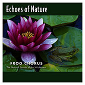 Frog Chorus by Echoes of Nature