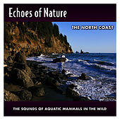 The North Coast by Echoes of Nature