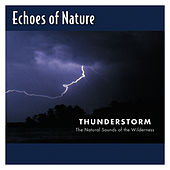 Thunderstorm by Echoes of Nature