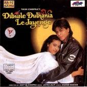 Dilwale Dulhania Le Jayenge & Hits Of Yash Raj by Various Artists
