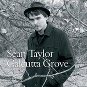 Calcutta Grove by Sean Taylor