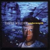Underneath von David Wilcox