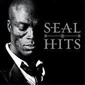 Hits by Seal