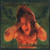 Fallen Angel by Sarah Jane Morris
