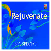 Spa Special - Music to  Help You Rejuvenate by Various Artists