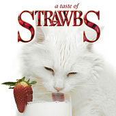 A Taste Of Strawbs by The Strawbs