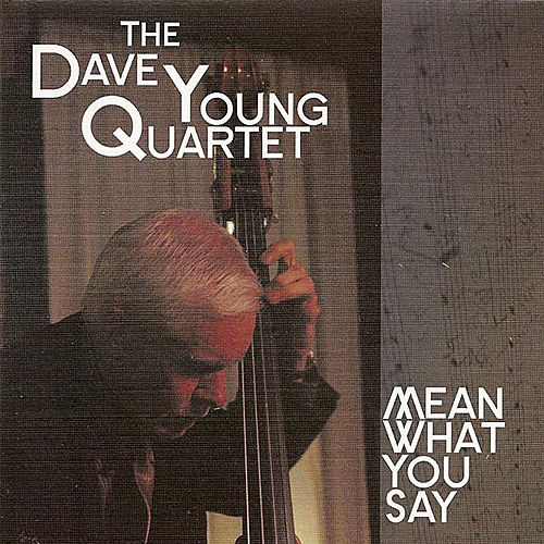 Mean What You Say by Dave Young