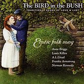 The Bird In The Bush: Traditional Songs Of... by Various Artists