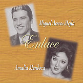 Enlace by Miguel Aceves Mejia