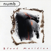 Blood Meridian by Numb