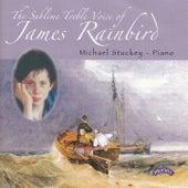The Sublime Treble Voice of James Rainbird / Michael Stuckey (Piano) von James Rainbird