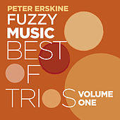 Fuzzy Music Best Of Trios Vol. 1 by Peter Erskine