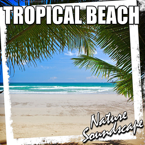 Tropical Beach (Nature Sound) by Nature Soundscape