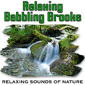 Relaxing Babbling Brooks (Nature Sounds) by Relaxing Sounds of Nature