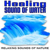 Healing Sound of Water (Nature Sounds) by Relaxing Sounds of Nature