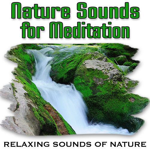 Nature Sounds for Meditation (Nature Sounds) by Relaxing Sounds of Nature