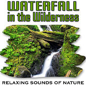 Waterfall in the Wilderness (Nature Sounds) by Relaxing Sounds of Nature