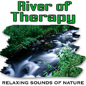 River of Therapy (Nature Sounds) by Relaxing Sounds of Nature