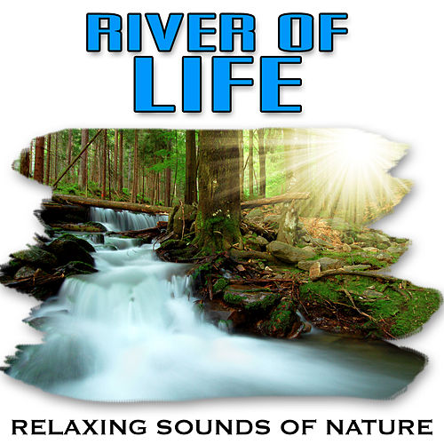River of Life (Nature Sounds) by Relaxing Sounds of Nature