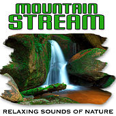 Mountain Stream (Nature Sounds) by Relaxing Sounds of Nature