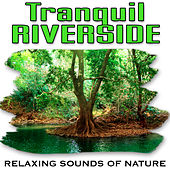 Tranquil Riverside (Nature Sounds) by Relaxing Sounds of Nature